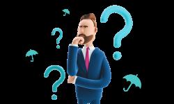 Understanding PAYE Options